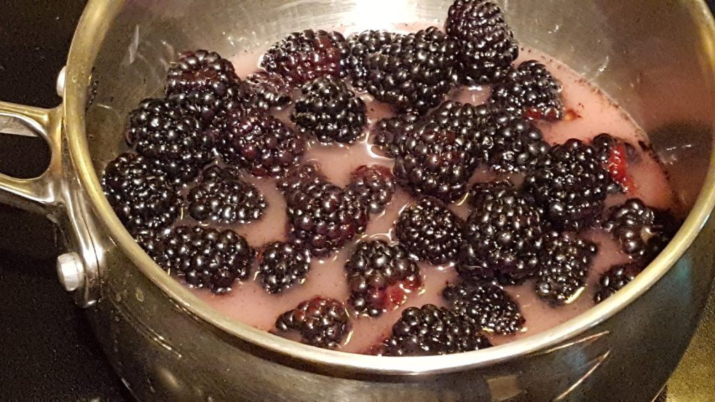 Stewing blackberries in Biltmore cookware