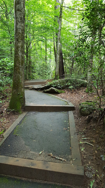 Walking trail - explore SC
