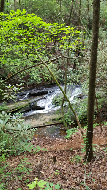 You begin your hike at an elevation of 1,160 feet at the Nature Center, and rise to 1,520 feet with numerous views of cascading waterfalls as you pass through a forest that includes a dominant oak-hickory forest - beautiful