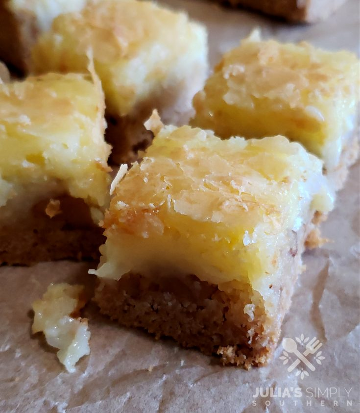 Delicious gooey bars with pecan and coconut dessert