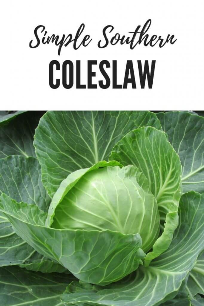 Southern Style Coleslaw Recipe (Not Sweet)